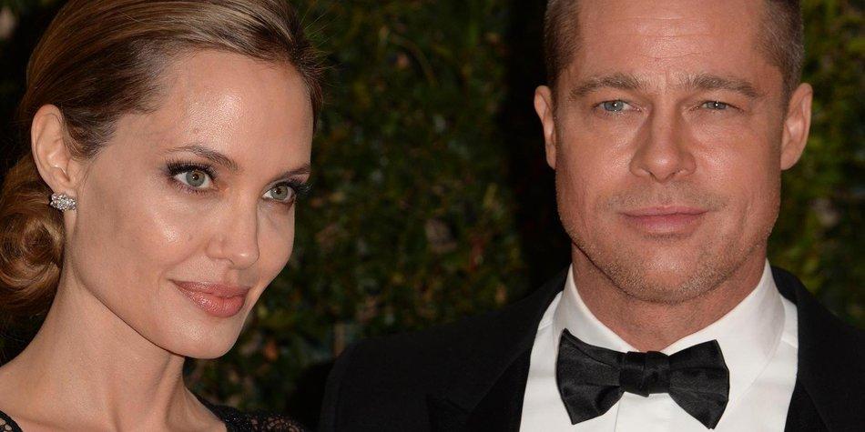 Angelina Jolie und Brad Pitt sind ausgezeichnete Winzer
