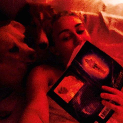 Miley Cyrus kuschelt mit ihren Hunden