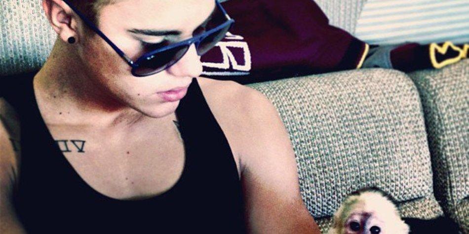 Justin Bieber hat ein neues Haustier!