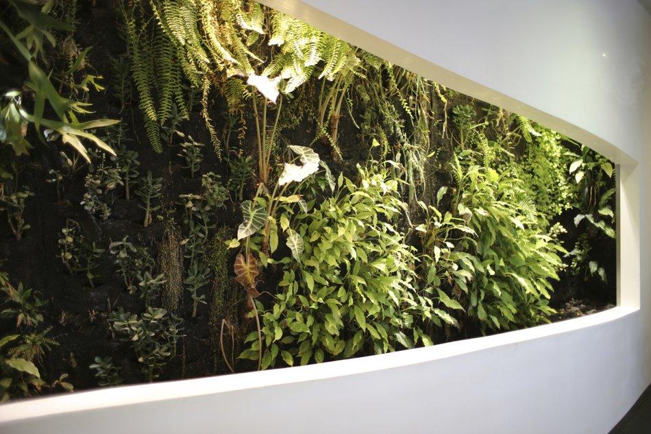 Wandgarten Selber Machen wandgarten so geht der neue wohnzimmer trend desired de
