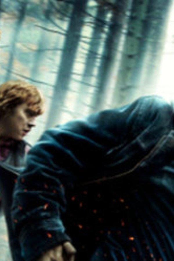 Teste Dich Harry Potter