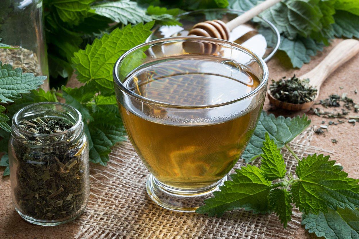 Brennessel-Tee für den Mittag