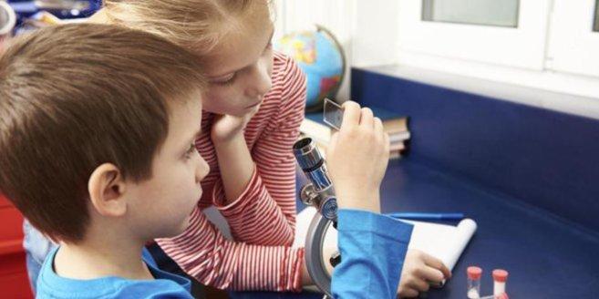 Experimente mit Kindern: Mikroskop