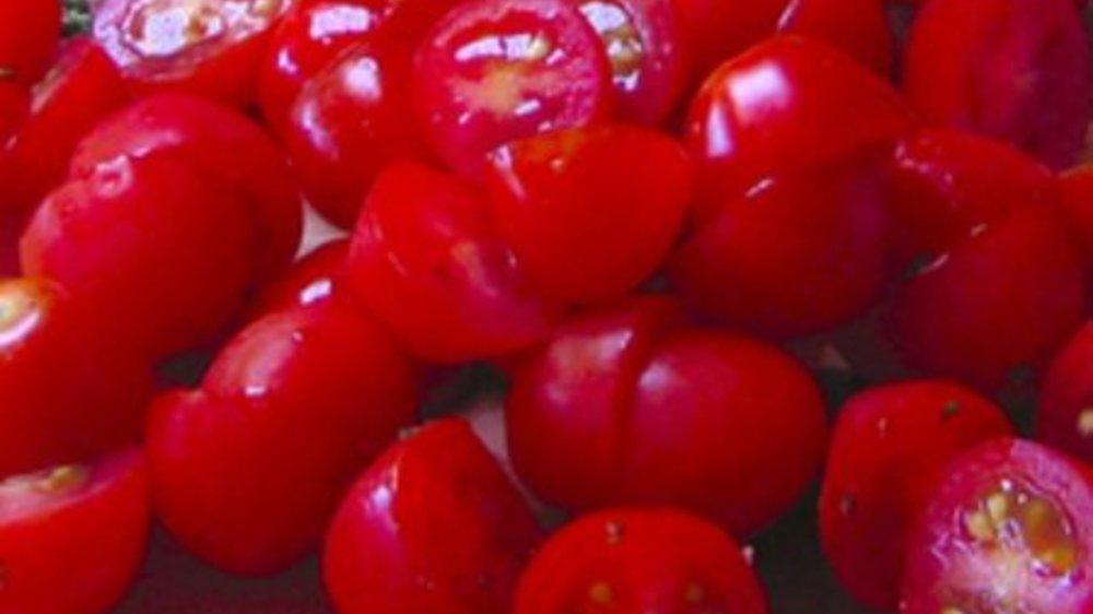 Tomaten-Mus