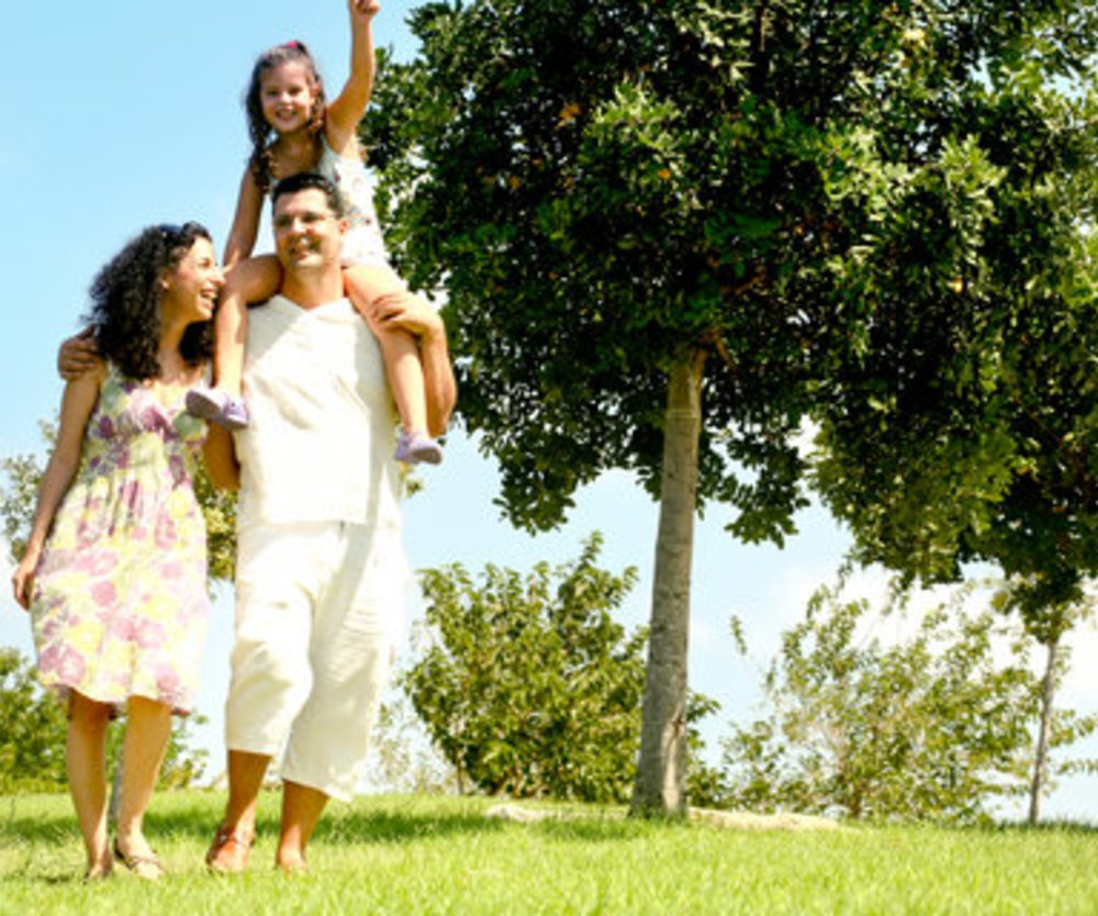Familie: Klassische Form rückläufig