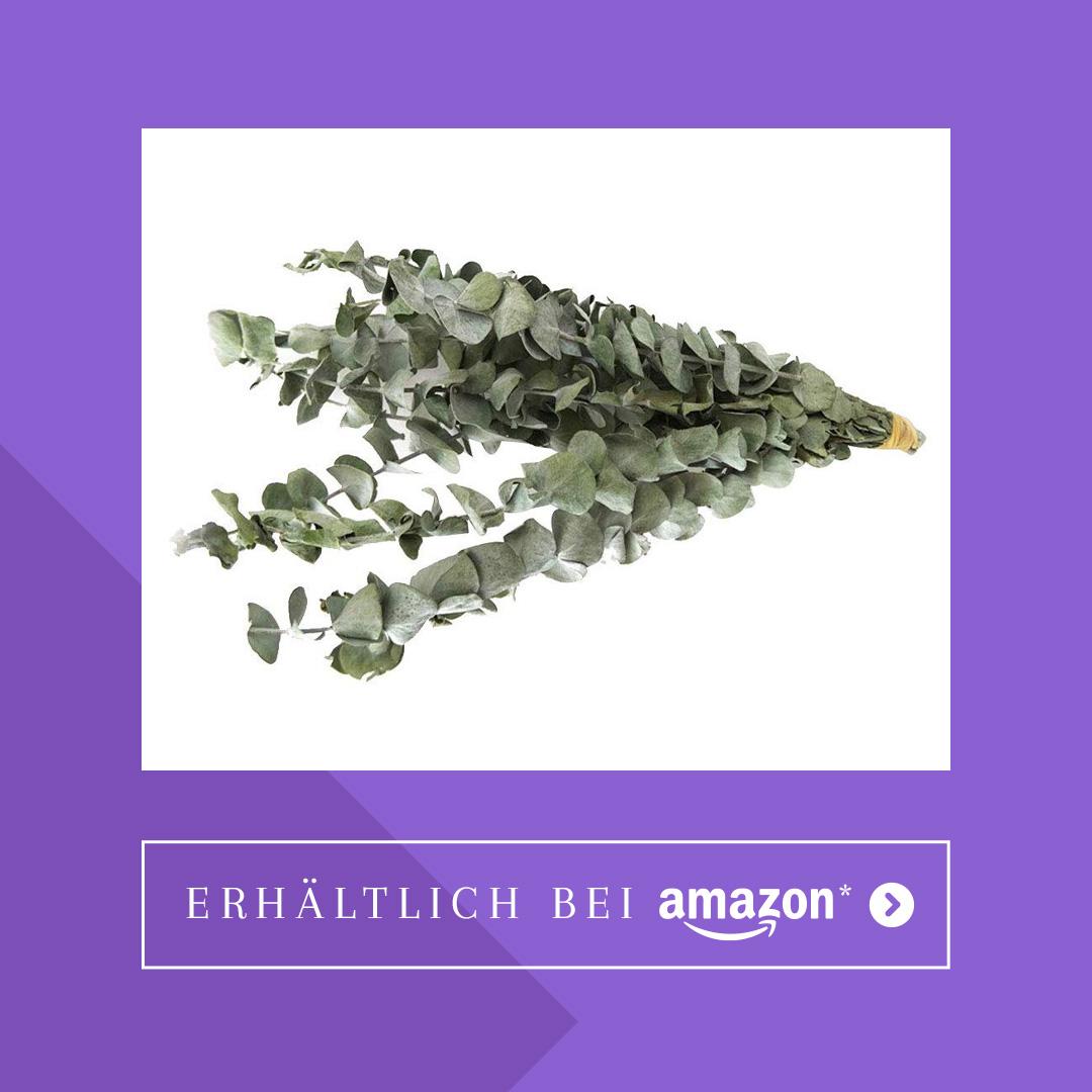 Eukalyptuszweige