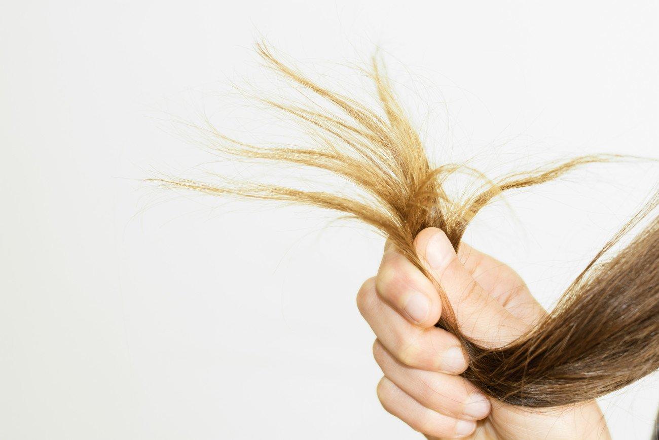 Kaputte Haare Haarbruch Spliss
