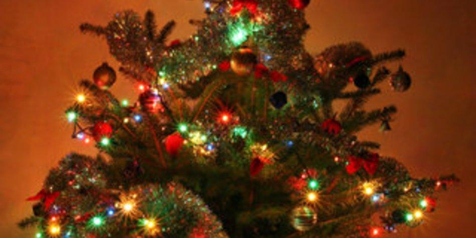 Die Weihnachtsbäume
