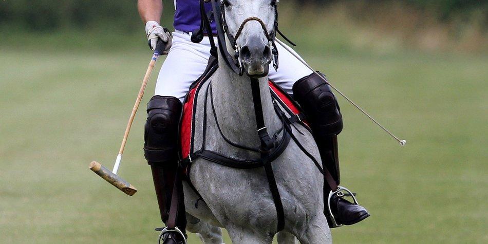 Prinz William: Polo statt Windeln wechseln