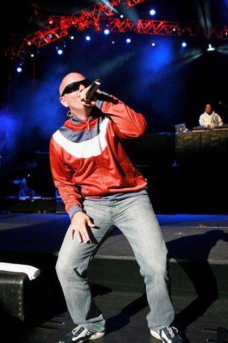 Pitbull in Australien