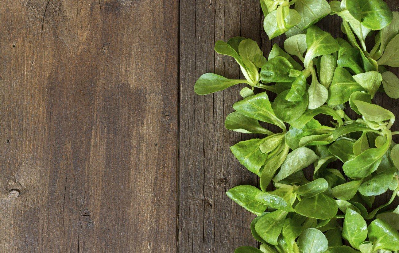 Feldsalat auf einem Holztisch
