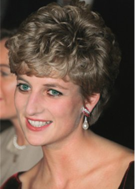 Prinzessin Dianas Kleid wird versteigert