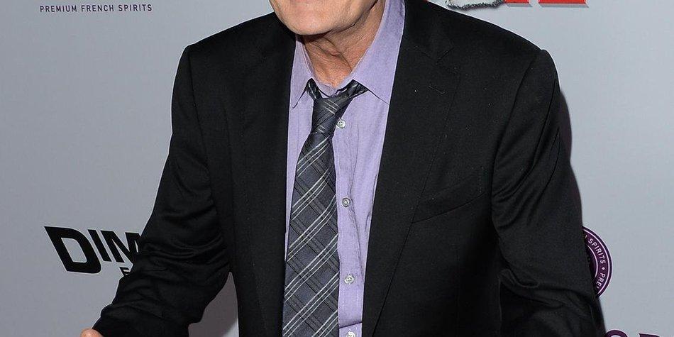 Charlie Sheen darf er seine Zwillinge nicht mehr sehen