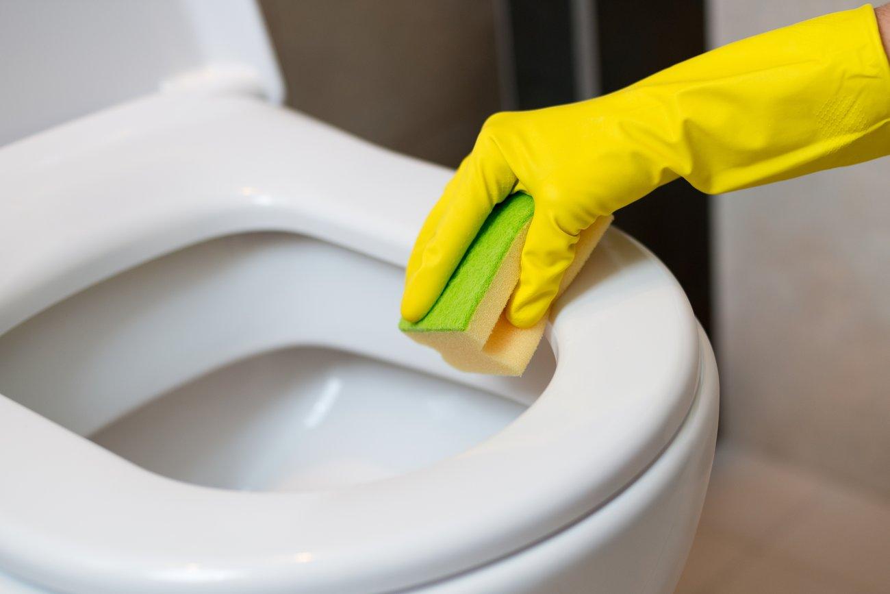 Putzschwamm Toilette