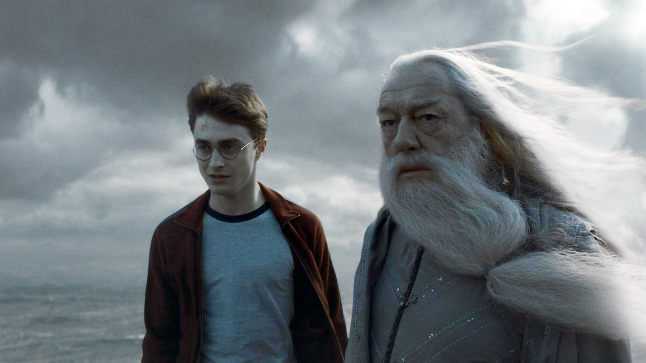 Dumbledore und Harry